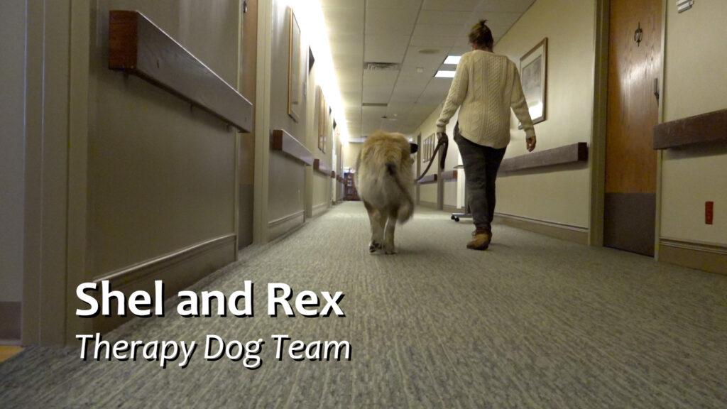 Shel And Rex 00 00 05 01 Still001